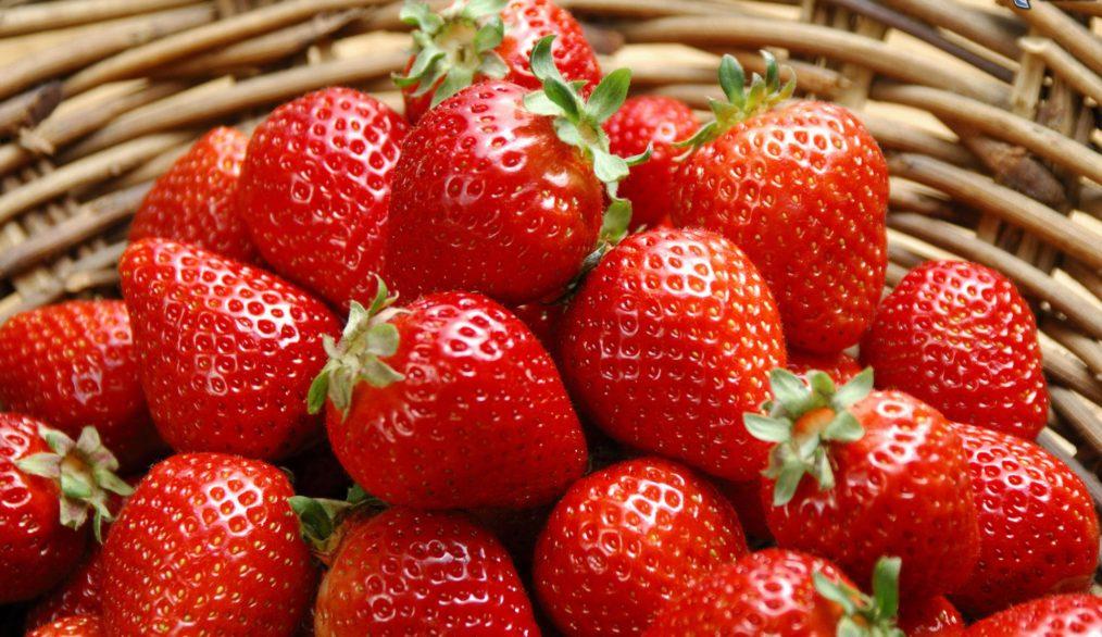 Estudio Revela los Efectos Beneficios de las Fresas frente al Cáncer de Mama