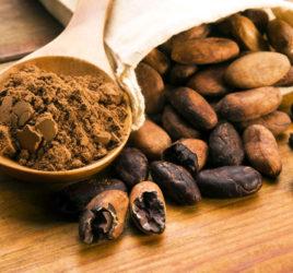Cacao Alimento Medicinal y Cosmético