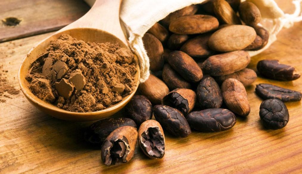 cacao_propiedades_alimenticias_cosmeticas_cacao_puro_bio_betica_biobetica_campo_betica_campobetica