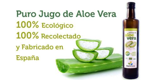 Aloe Vera Ecológico BioBética