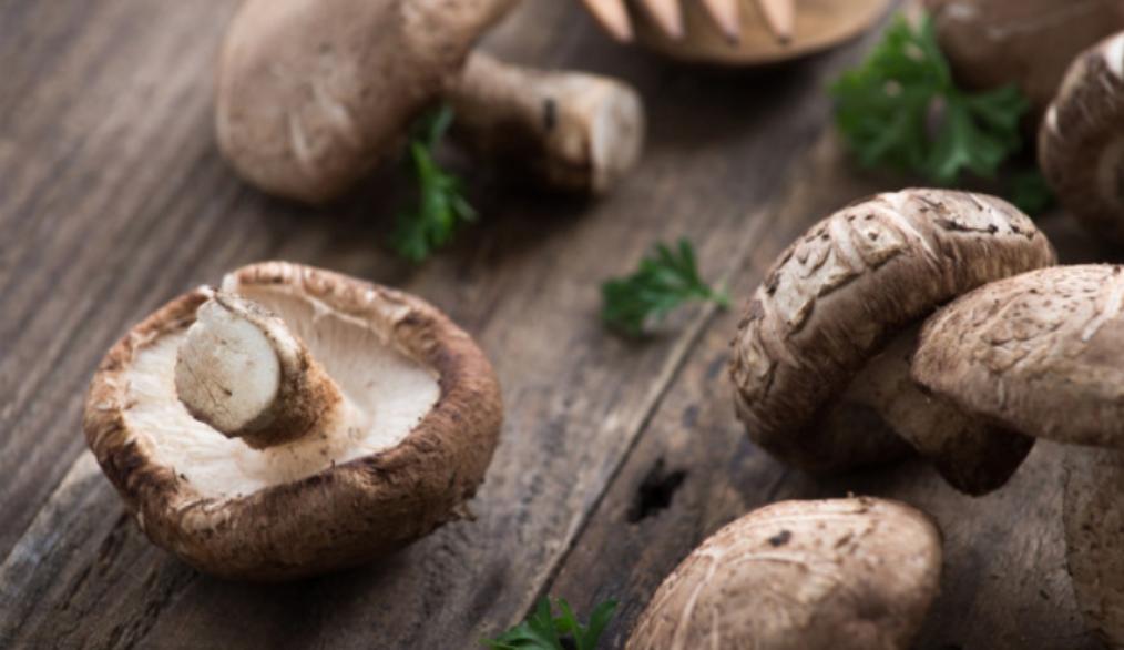 Paté_shiitake_receta_vegana_AOVE_condimentado_Boletus_tahin_tahini_crudo_tostado_productos_ecologicos_bio_betica_biobetica